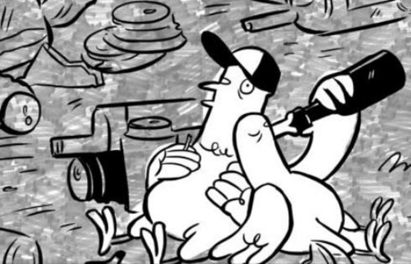 festival canland ranlar Prohibtion in 1920s why you should never ever feed pigeons poland 2017 01 20 b w polish director producer agnieszka wi tek animated epigram about pigeons